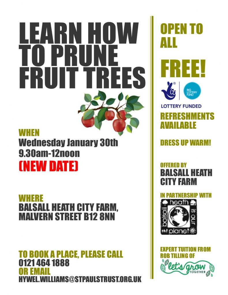 Tree Pruning Poster - Revised Date