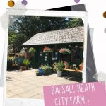 Reopening of Balsall Heath City Farm on Monday 13th July 2020